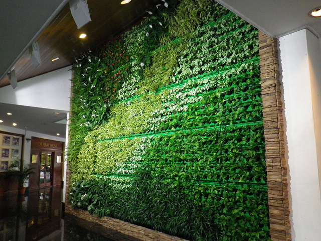 living walls a growing trend